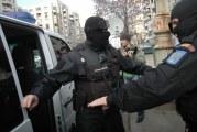 """Atac la """"mafia lemnului"""" din Valcea! Perchezitii fara precedent intr-un dosar cu prejudiciu de un milion de euro!"""