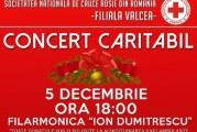 Concerte sustinute de elevi la Ramnicu Valcea si Drobeta Turnu Severin! La Valcea, este marcata Ziua Voluntarului