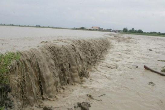 Cod galben de inundații pe anumite sectoare ale Dunării, până pe 31 martie! Vezi aici ce județe din Oltenia sunt vizate!