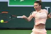 Simona Halep s-a calificat in semifinale la Indian Wells! Partida pe muchie de cutit cu croata Petra Martici, castigata de Simona dupa o revenire extraordinara!