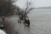 Cod portocaliu de inundaţii pe sectorul românesc al Dunării! Sunt vizate şi trei judeţe din Oltenia!