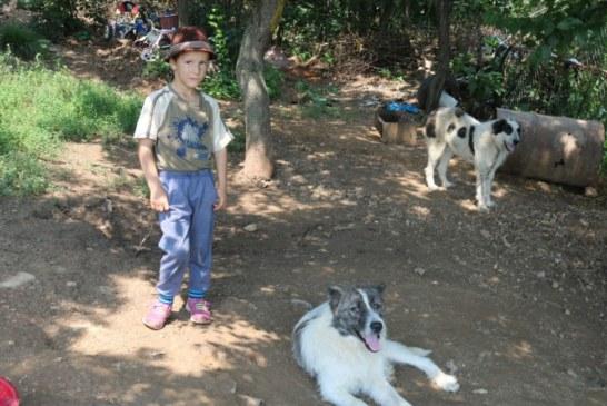 In timp ce copiii de varsta lui au vazut serpi doar la televizor sau la Zoo, un pusti de 6 ani se lupta cu ei! Afla povestea lui Ionut, copilul care traieste in salbaticie!