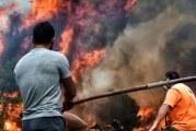 """Tragedia din Grecia, vazuta de o romanca: """"Autoritatile au fost total nepregatite! Unii oameni au murit pentru ca au fost prost coordonati!"""""""