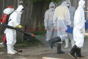 Gripa aviara ameninta din nou! Dupa ce pesta porcina a facut ravagii in tara, Romania are un focar de gripa aviara la granita cu Bulgaria! Oltenia ar fi prima regiune afectata in cazul raspandirii!