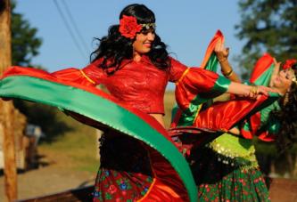 Astazi, 8 aprilie, este Ziua Internationala a Romilor! Este ziua in care se sarbatoreste cultura romilor si se incearca sensibilizarea populatiilor la probleme cu care se confrunta!
