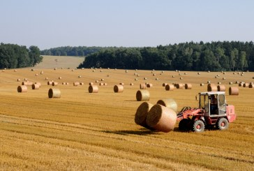 Bani pentru fermieri în 2020. LISTA COMPLETĂ a măsurilor de sprijin