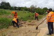 Toți angajații Direcției de Drumuri Craiova sunt la lucru, curăță șosele și șanțuri