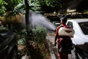 Două săptămâni de dezinsecție la Craiova, de mâine